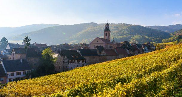 Zoom sur les vins d'Alsace et ce vignoble aussi divers que riche en arômes