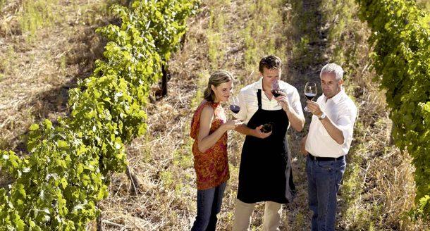 De nouveaux coffrets œnologie ! Nos dernières surprises pour les amateurs de vin