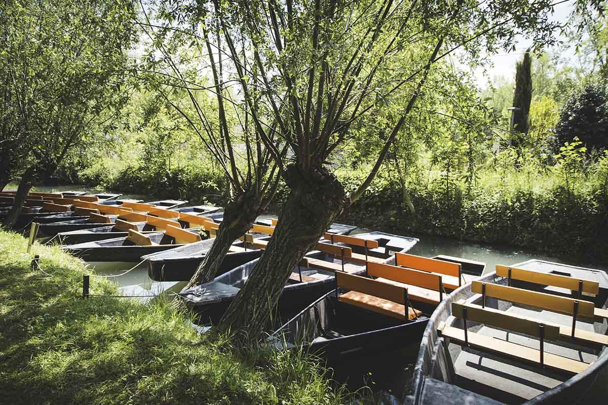 Visite Marais Poitevin