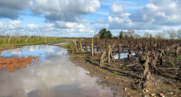Visite du Domaine Topaze et dégustation de vins avec Clémentine, My Little Pipe Dream