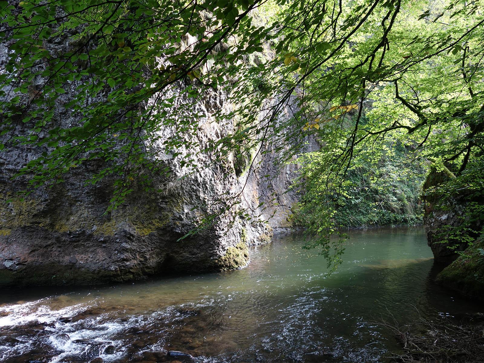 Les Gorges de la Jordanne dans le Cantal